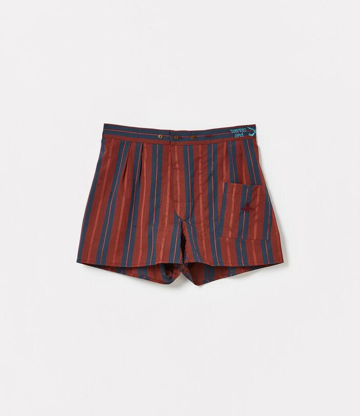 We Boxer Shorts Azure Stripes 1