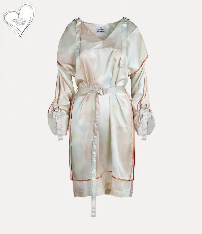 Scylla Dress 1