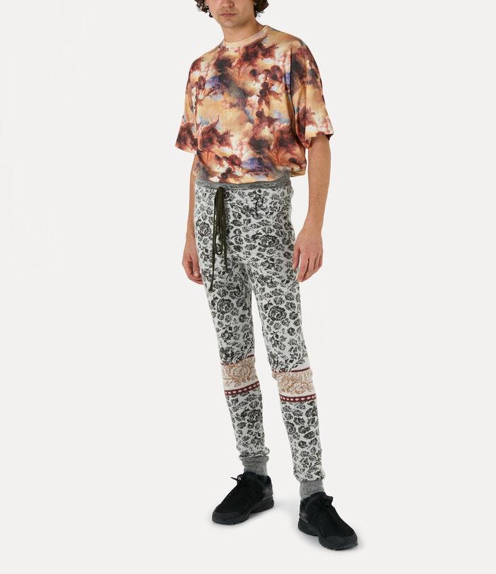 Raphael T-Shirt 2